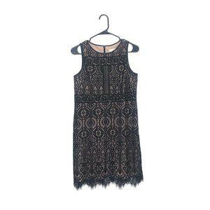 Loft Petite Stained Glass Lace Mini Sheath Dress 8